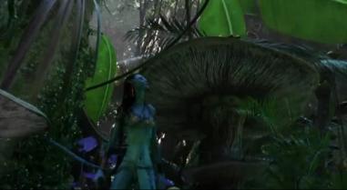 Avatar Original