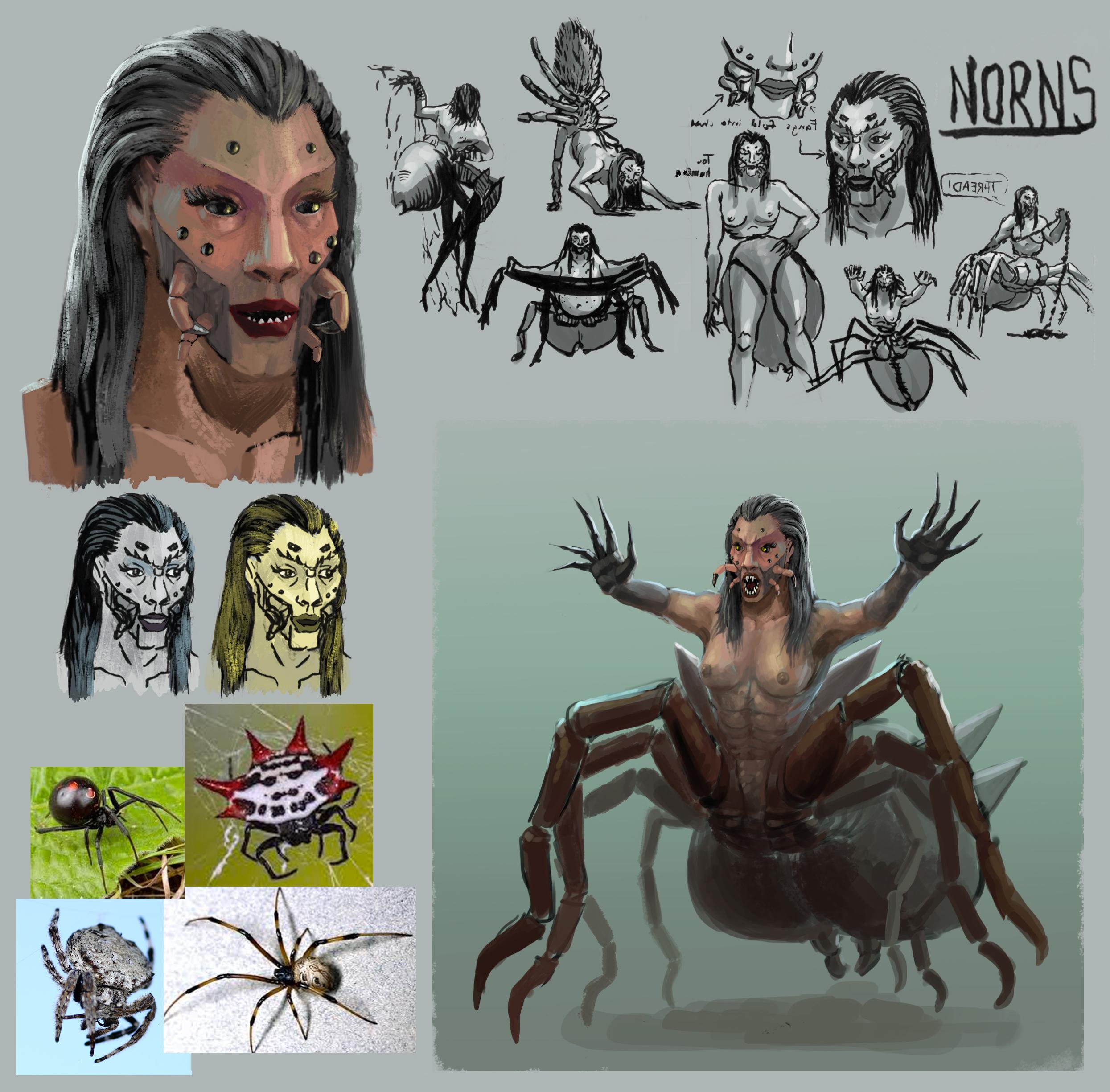 Norn Designs